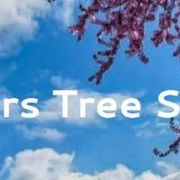 Fishers Tree Removal