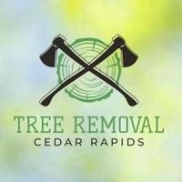 Cedar Rapids Tree Removal